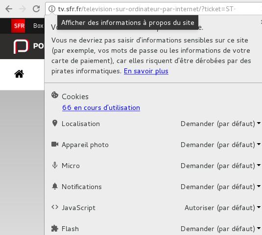 flash player chrome.jpg