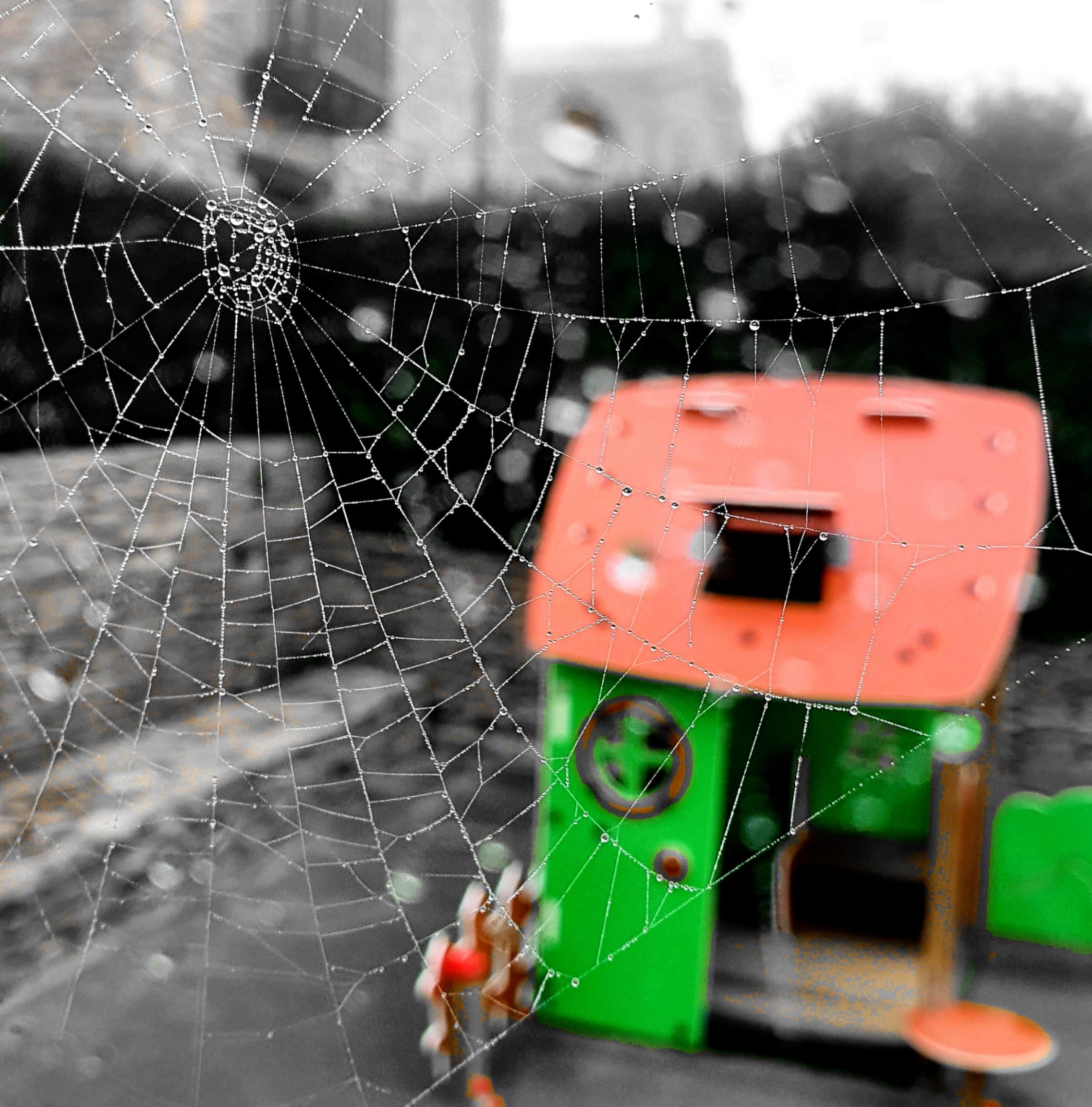 PicsArt_01-16-11.01.23.jpg