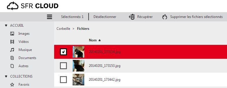Selection-1-ER-fichier.JPG